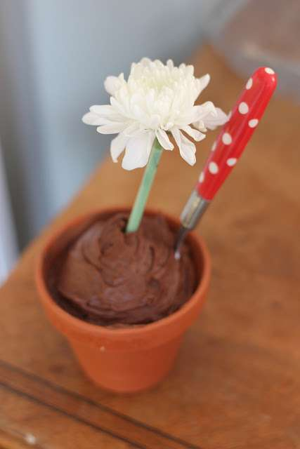 Precious Potted Treats 2