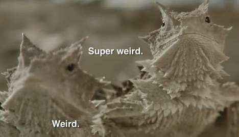 Witty Wildlife Commercials