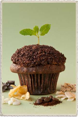 compost cupcakes 2
