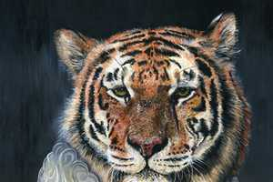 Melissa Hartley Depicts Members of the Cat Species in Regal Clothes