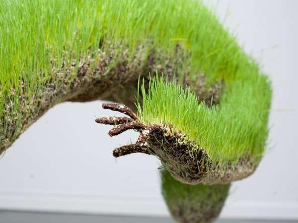 life of grass 10
