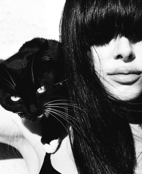 Cat-Filled Editorials - Alexi Papalexopoulos Lenses a Fierce and Sultry Photoshoot