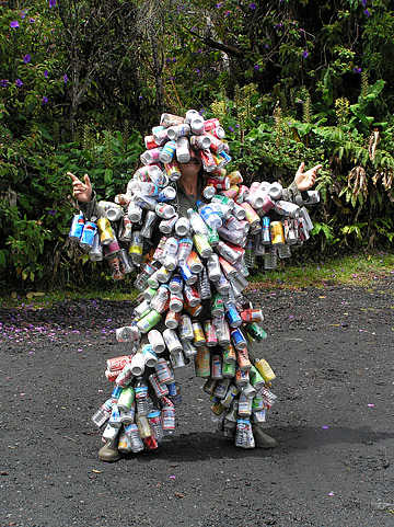 Environmentalist Artist or Crazy Person?