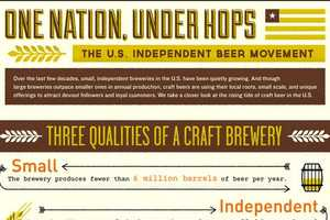 The 'One Nation, Under Hops' Infographic Looks at Independent Breweries