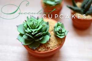 These Succulent Cupcakes Will Keep Your Guests Guessing