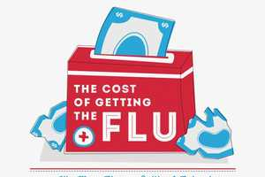 The Cost of the Flu Infographic Looks at its Impact in the Us