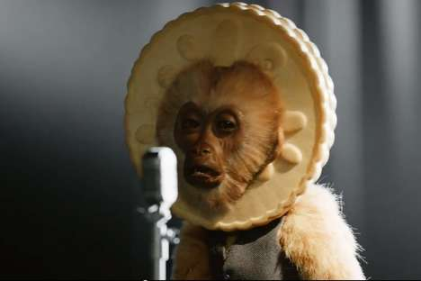 musical monkeys jammie dodgers
