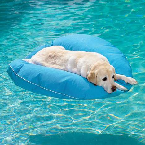 pet floatie