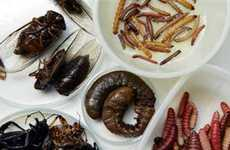 10 Edible Insect Delicacies