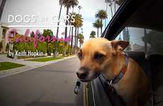 Hollywood Cruising Canines - 'Dogs in Cars California' Blends Together Popular Material