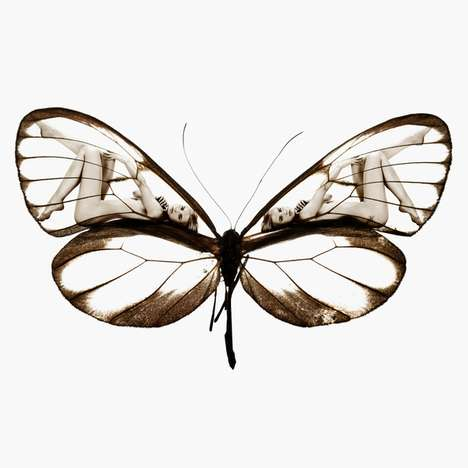 Lady-Infused Butterfly Shoots - 'Mimikry' by Carsten Witte is Elegant and Balanced