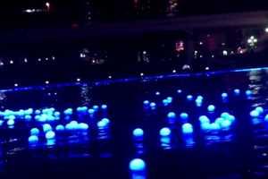Panasonic Goes Green during Japan's Tokyo Hotaru Festival