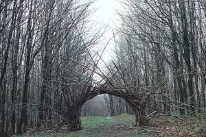 Andy Goldsworthy Creates Art that Develops a Life of its Own
