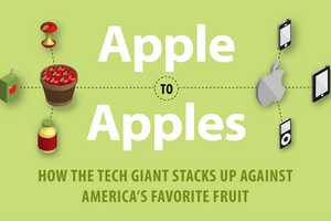 The 'Apple to Apples' Infographic is a Unique Comparison Breakdown