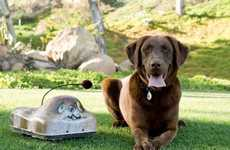 Battery-Operated Canine Companions