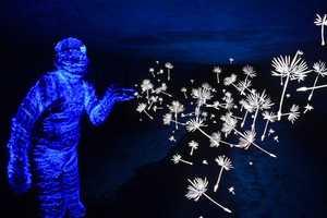 TigTab Creates Breathtaking Glow-in-the-Dark Art