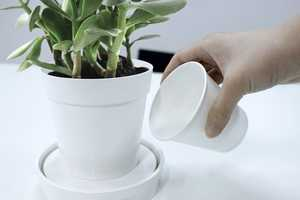 iGrow by Psychic Factory is a Pot That Absorbs Water on Its Own