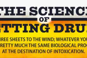 'The Science of Getting Drunk' Infographic is Eye-Opening