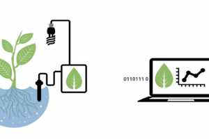 Bitponics Hydrophonics Program Assists Through Sensors