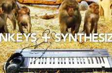 DJing Monkey Marketing - The Volt 2012 Festival Promo Mixes Primates and Synthesizers