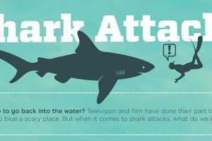 The 'Anatomy of a Shark Attack' Infograph Does Not Relieve Fear