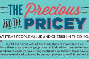 The 'Precious and the Pricey' Infograph Determines What to Save