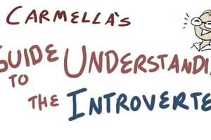 The 'Guide To Understanding the Introverted' is Cartoon-Like