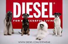 Chic Canine Campaigns - The Diesel Spring Summer 2012 Ad is Unexpected