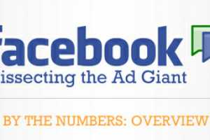 The 'Facebook: Dissecting the Ad Giant' Infograph is