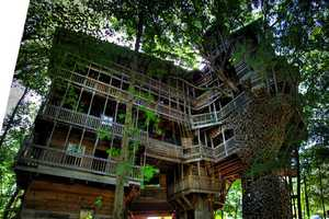 The Minister's Treehouse is the World's Largest Treehouse