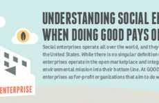 Social Entrepreneur Infographics