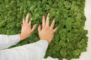 Evergreen by Freund is a Wall-Mounted Moss Panel that Helps a Home Breathe