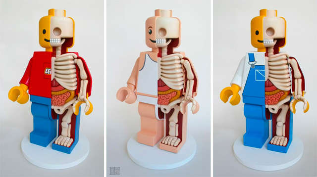 Skeletal Block Toys