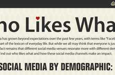 Demographic Separated Social Media - The 'Who Likes What' Infographic is an Interesting Divide
