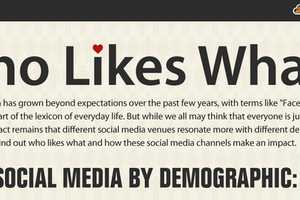 The 'Who Likes What' Infographic is an Interesting Divide