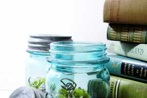 The Mason Jar Terrarium is a Great Vacation Keepsake