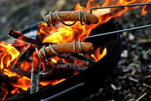 The Hot Dog Roasting Sticks are a Cookout Must-Have