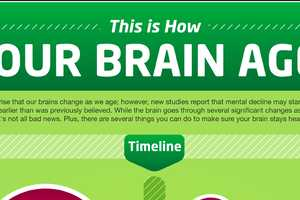 The How Your Brain Ages Infographic Provides Tips to Keep the Mind in Shape
