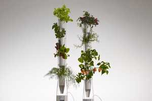 The Windowfarms Allows You to Grow Fresh Vegetables All Year Round
