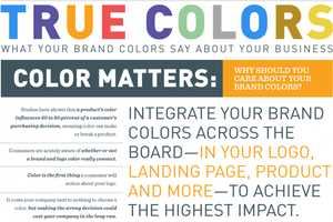 The 'True Colors' Infographic is Insightful for Budding Companies