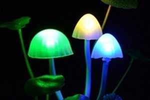 The Kinoko Mushroom USB Lamp is Convenient & Ecological