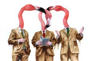 The Tony Taylor Animal Art Promotes Social Change