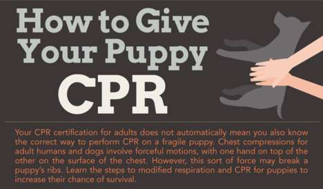 How To Give Your Puppy CPR