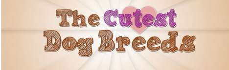 Cutest Dog Breeds infographic