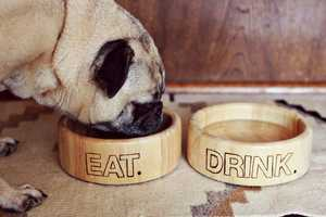 The 'A Beautiful Mess' Blog Shows How to Make Customized Dishware for Pups