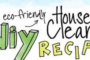 The DIY Household Cleaner Infographic is Eco-Approved