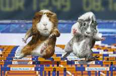Steve Bicknell Re-Creates Olympic Sports Using Guinea Pigs