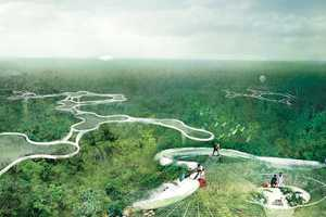 The Explorative Canopy Trail Project Proposes a Way to Research the Amazon