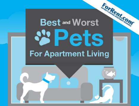 Animal Advice Charts - This Pet Infographic Shows the Best Choices for Those Living in Tight Spaces