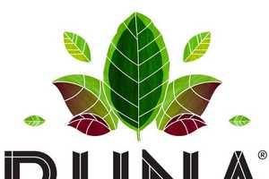 Runa Focused Energy Drinks Fund Development